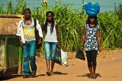 非洲组 库存图片