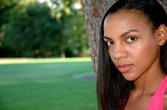 非洲裔美国人的秀丽 免版税库存图片