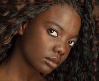非洲裔美国人的美丽的黑色纵向 免版税图库摄影