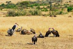 非洲雕 免版税库存照片