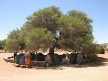 非洲露营地 免版税库存照片