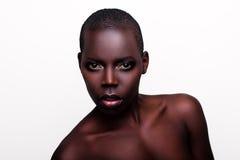 非洲黑人新性感的时装模特儿工作室纵向 库存图片
