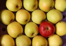非相容的苹果 免版税图库摄影