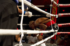 非职业和职业拳击 免版税库存图片