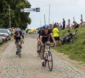 非职业小辈骑自行车者-环法自行车赛2015年 库存照片