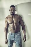 非裔美国人的爱好健美者人,赤裸肌肉躯干 库存照片