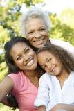 非裔美国人的祖母、放松在公园的母亲和女儿 库存照片