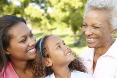 非裔美国人的祖母、放松在公园的母亲和女儿 库存图片
