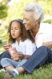 非裔美国人的祖母和孙女吹的泡影在公园 库存照片