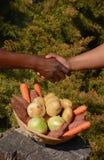 非洲企业握手 免版税库存照片