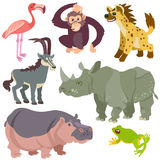 非洲动物动画片集 库存图片