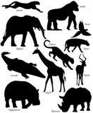 非洲动物形状 免版税库存图片