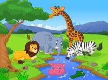 非洲动物是分别地能漫画人物逗人喜爱的表单例证横向全景徒步旅行队场面系列端三对使用 库存图片