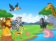 非洲动物是分别地能漫画人物逗人喜爱的表单例证横向全景徒步旅行队场面系列端三对使用 免版税库存照片