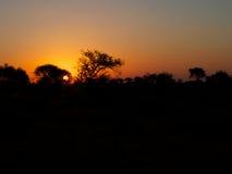 非洲南日落 图库摄影