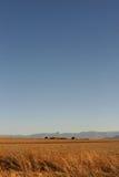 非洲地平线 库存照片