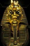 非洲埃及开罗埃及人博物馆 图库摄影