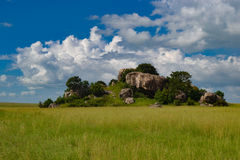 非洲大草原风景,坦桑尼亚非洲 库存图片