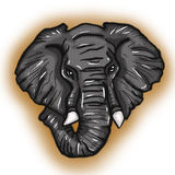 非洲大象风格化例证画象 免版税库存照片