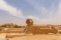 非洲开罗埃及吉萨棉极大的狮身人面象 库存图片