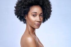 非洲黑式样至善至美的皮肤 图库摄影