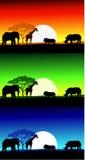 非洲徒步旅行队横向背景 免版税库存图片