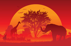 非洲徒步旅行队 库存图片