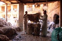 非洲摩洛哥FES 库存图片
