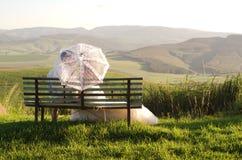 非洲新娘和新郎在长凳与风景 免版税库存照片