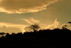 非洲日落(肯尼亚) 免版税库存照片