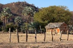 非洲泥小屋 库存照片