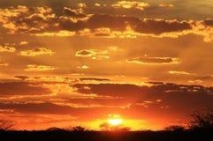 从非洲的日落背景-每朵云彩有金黄衬里 库存图片