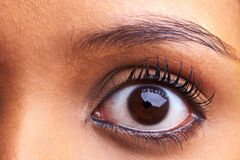 非洲眼睛 库存图片