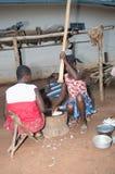 非洲膳食 免版税库存照片