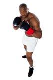 非洲黑色拳击手战斗准备好 库存图片