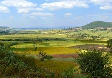 非洲,埃塞俄比亚。非洲自然的风景。山, VA 免版税库存图片
