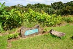 非洲,颜色谷在Chamouny在毛里求斯海岛 免版税图库摄影