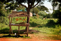 非洲水果摊 库存图片