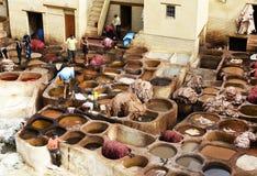 非洲fes摩洛哥皮革厂 免版税库存照片