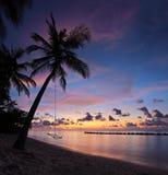 靠岸与棕榈树在日落,马尔代夫海岛 免版税库存照片