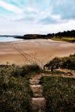 靠岸在与踪影的Adds森林公园在导致海洋的沙子 库存图片
