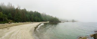 靠岸在太平洋海岸早晨和雾温哥华岛加拿大 免版税库存照片
