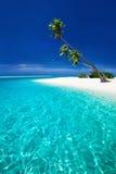 靠岸在有伸出盐水湖的棕榈树的一个热带海岛上 库存照片