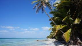 靠岸在Isla (小岛) Saona在多米尼加共和国 图库摄影