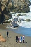 靠岸的抹香鲸 图库摄影