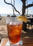 靠海滨被冰的茶 库存图片