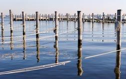 靠码头树木繁茂水平的杆的绳索 免版税库存图片