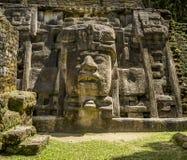 面具寺庙, Lamanai废墟 库存图片