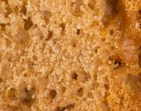面包作为背景 2009朵超级花宏观的夏天 免版税图库摄影