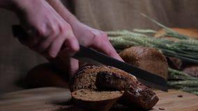 面包切口  股票录像